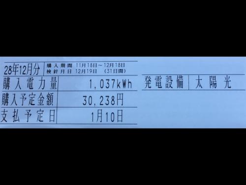 IMG_1391